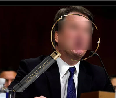 transparent kavanaugh