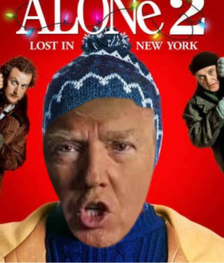 trump home alone 5