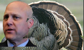 mitch turkey