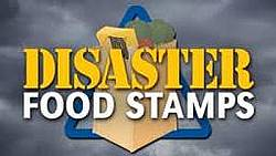 disaster-food-stamps